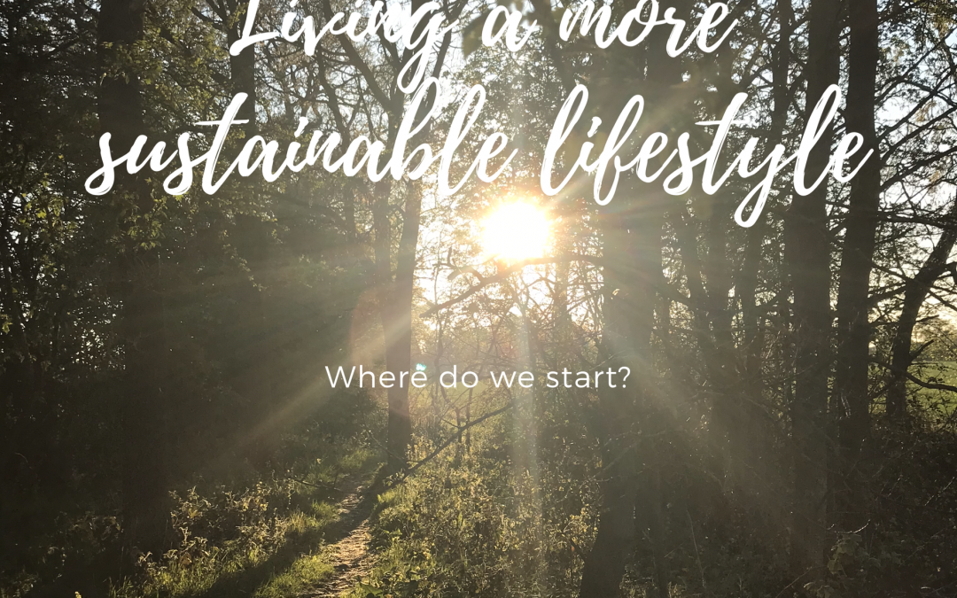 Living a More Sustainable Lifestyle: where do we start?
